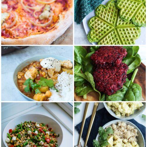 Vegetarisk madplan uge 24