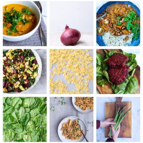 Vegetarisk madplan uge 43
